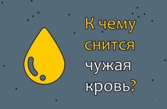 veshhie sny i k chemu snitsya chuzhaya krov